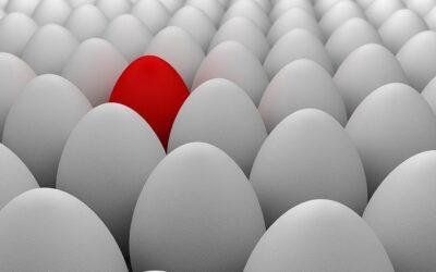 NEMO: el Movimiento Por el Levantamiento del Bloqueo y Tres Grandes Diferencias